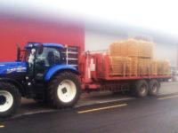 Festmobiliar Festbestuhlung Materialtransport
